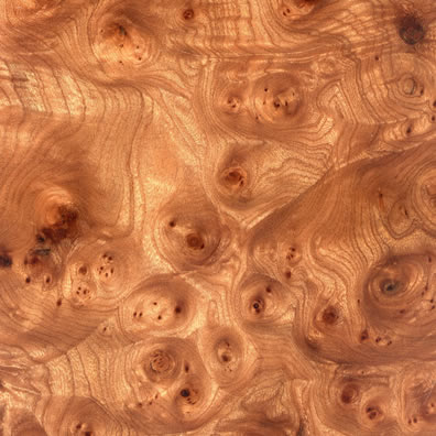 walnut burl wood